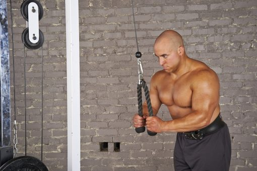 Tricep Ropes